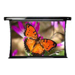Elite Screens CineTension2 Series Projection Screen - 116 In ( 295 Cm )