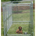 Jewett Cameron The Lucky Dog Kennel Grand Champion Modular Kennel Gate Gate only (5'W x 4'H)