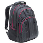 SwissGear® JETT - Notebook Carrying Backpack