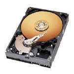 Western Digital Hard Drive Disk, 160 GB, 7200RPM Motor