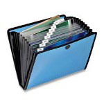 Cardinal Letter Size Open Top File with Elastic Closure and 13 Pockets, Assorted