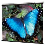 Draper V Screen - Projection Screen - 1:1 - Fiberglass Matt White