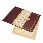Geographics Presentation Kits, Bronze, Each