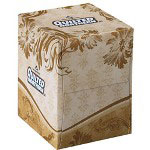 Quilted Northern Premium 2-Ply Facial Tissue, Case of 36