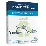 "Great White Multipurpose Paper, 8 1/2""x11"", 92 Bright, White, 20 LB"