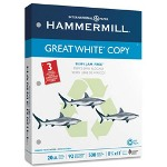 "Great White Multipurpose Paper, 8 1/2""x11"", White, 20 LB, One Ream"