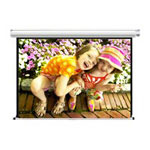 Draper Manual Screen Projection Screen - 96 in