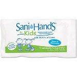 Nice-Pak Sani-Hands Sanitizing Wipes, 1 Box