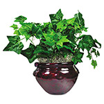 Nudell Plastics Mixed Greenery with Mahogany Colored Pot, 8""