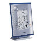 P3 International Wireless Professional Weather Station