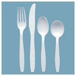 Solo Boxed White Plastic Teaspoons, Case of 10