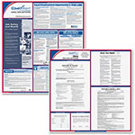ComplyRight Ohio Fed/State Labor Law Kit