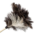 Unisan Economy Ostrich Feather Duster, 13""