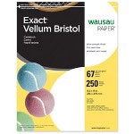 "WaUSAu Papers Exact® Vellum Bristol Paper, 67 lb., 8 1/2""x11"", White"