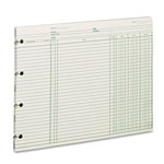 Wilson Jones Green End Balance Ledger Forms, Both Sides Alike, 9 1/4x11 7/8, 100/Pack