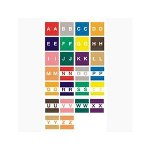 Ames Color File Large Alpha Labels, 1 7/8 x 1 7/8, Letter A Z, Assorted, 500 Labels each Letter