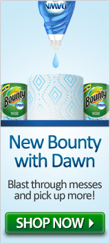 New Bounty Paper Towels with Dawn
