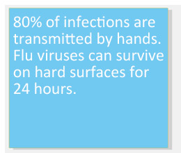 80% of infections are transmitted by hands.