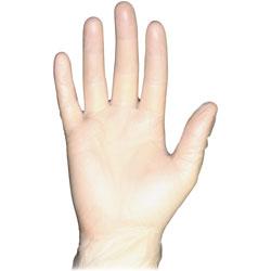 Impact Disposable Powder-Free Vinyl Gloves, Medium, 100/Box