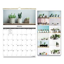 Blueline 12-Month Wall Calendar, 12 x 17, Succulent Plants, 2021